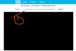 浣熊VIP视频播放器网页版使用说明