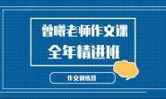 52个新视角【完结】小学语文作文独创方法-全年精进班